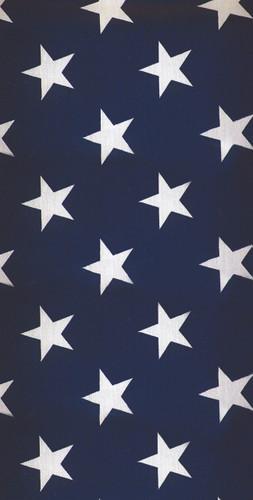 USA Stars Backdrop