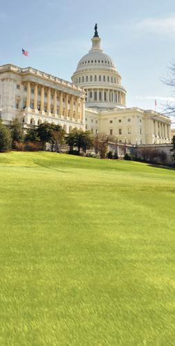 Capitol Hill Backdrop