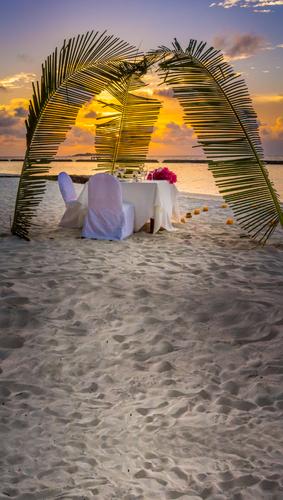 Romantic Beachside Backdrop