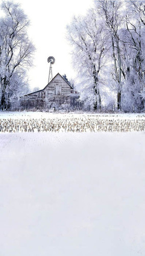 Snowy Barn Backdrop