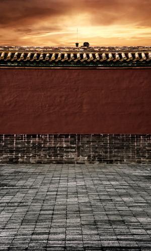 Forbidden City Wall Photography Backdrops