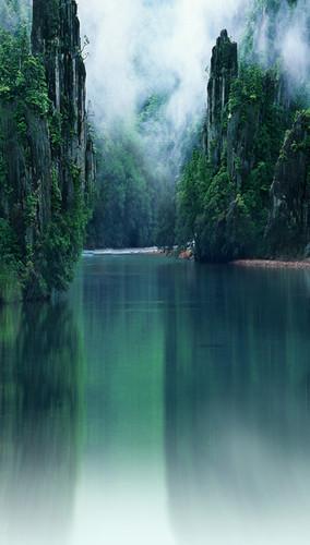 Misty River Backdrop