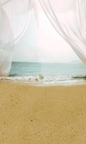 Beach Rendevous Backdrop