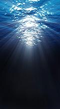 underwater-backdrop.jpg