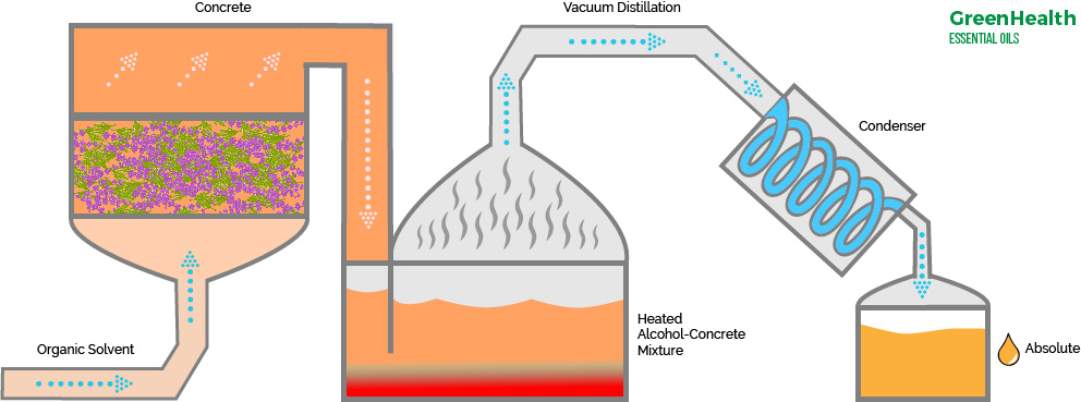 solvent-extraction-new.jpg