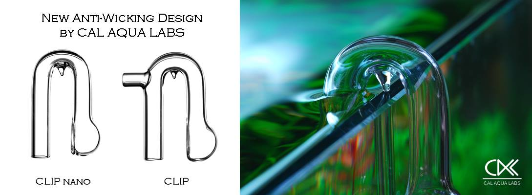 cal-aqua-clip.jpg
