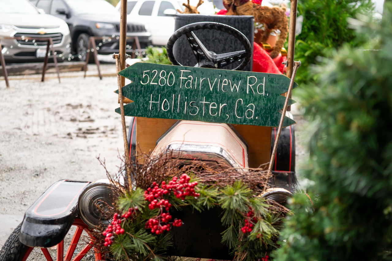 Holidays In Hollister: Week 1 Recap!