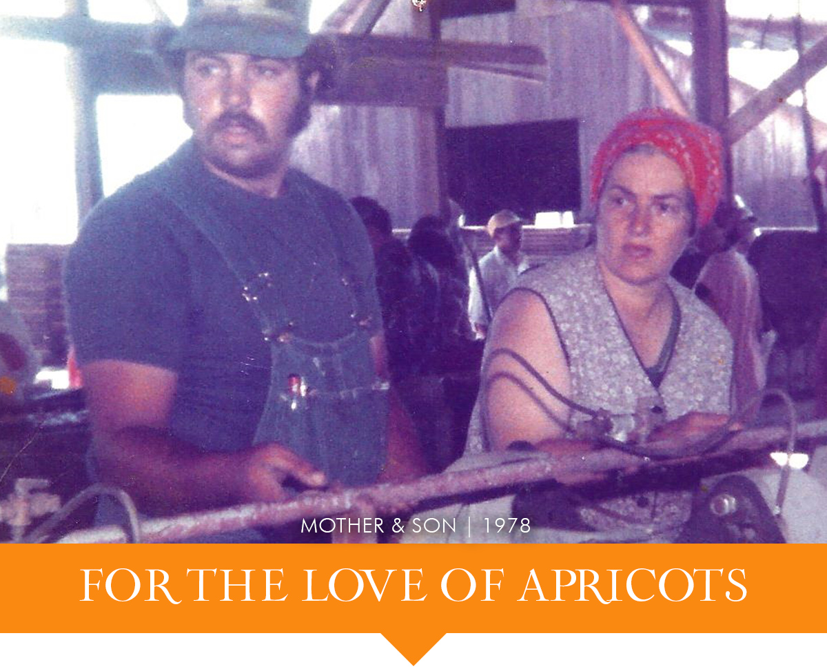 Blenheim Apricot Growers - Jim and Elsie Rossi