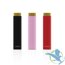 Artery Lady Q Discreet 1000mAh Starter Kit With 1.5ML Tank (MSRP $45.00)