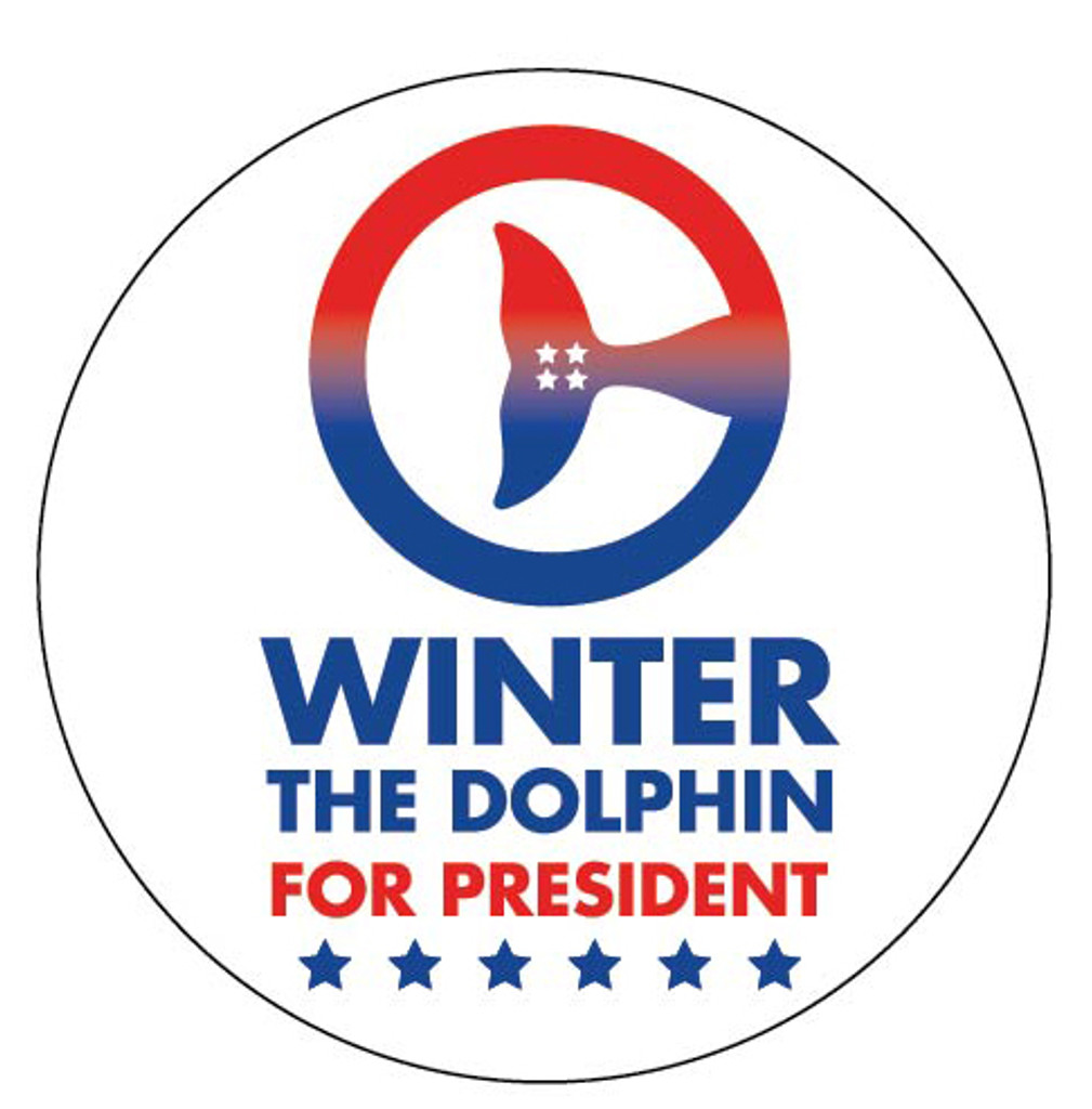 Winter for President Campaign Button