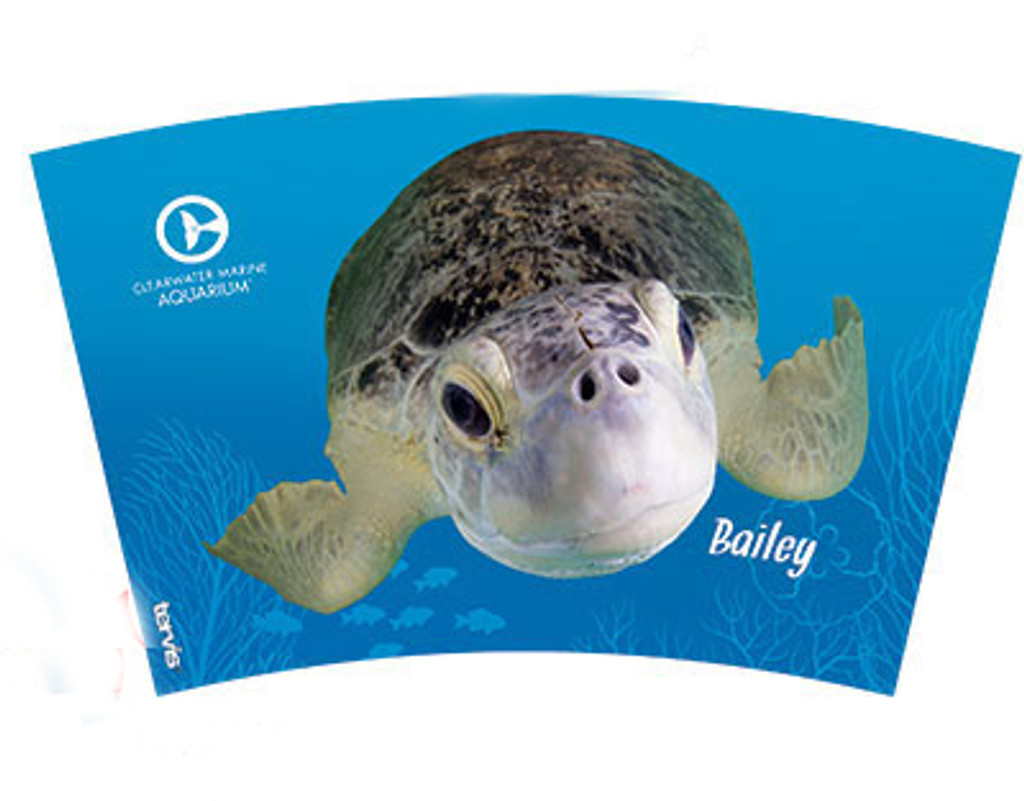 Tervis Bailey the Turtle Insulated Tumbler