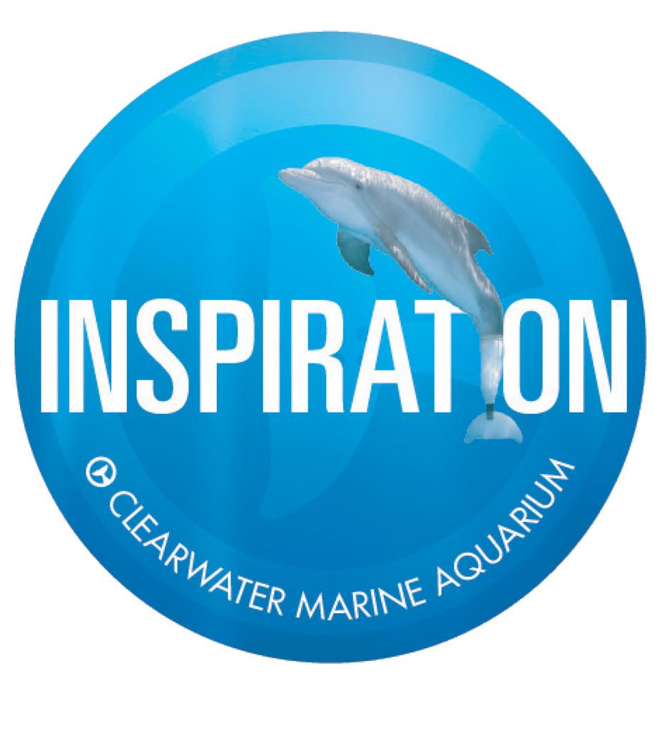 Winter the Dolphin Inspiration 4-Piece Coaster Set
