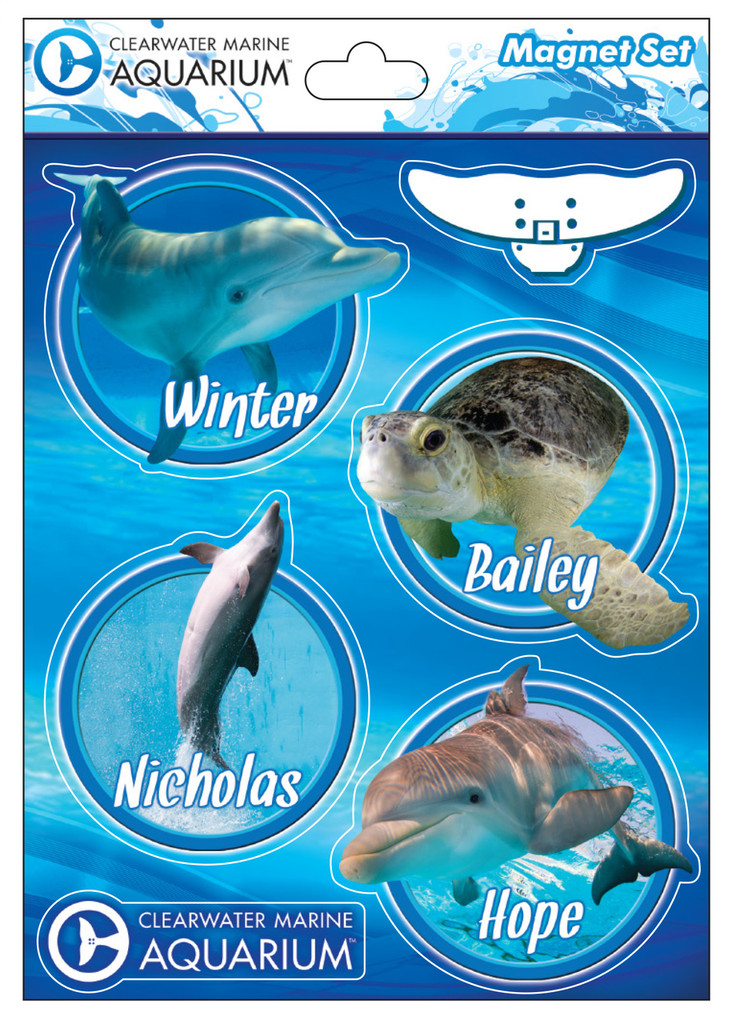 Clearwater Marine Aquarium Resident Animal 6-Piece Magnet Collection