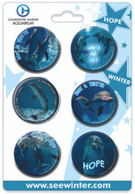 Winter & Hope 6-Piece Button Collection