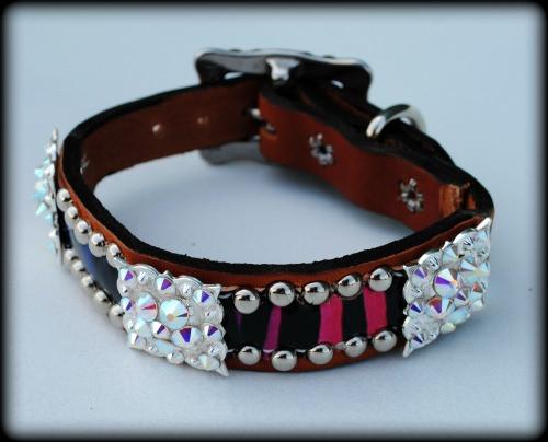 "Rainbow Zebra Dog Collar 10-21"""