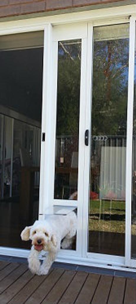 Click here to enlarge & Dog door for sliding door