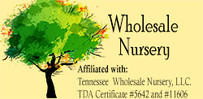 Wholesale Nursery Co