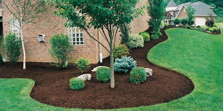Mulch in landscaping