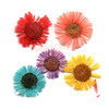 Small Daisy Pressed Real Dried Flowers (6 pieces)