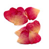 Rose Petal Pressed Real Dried Flowers (8 pieces)