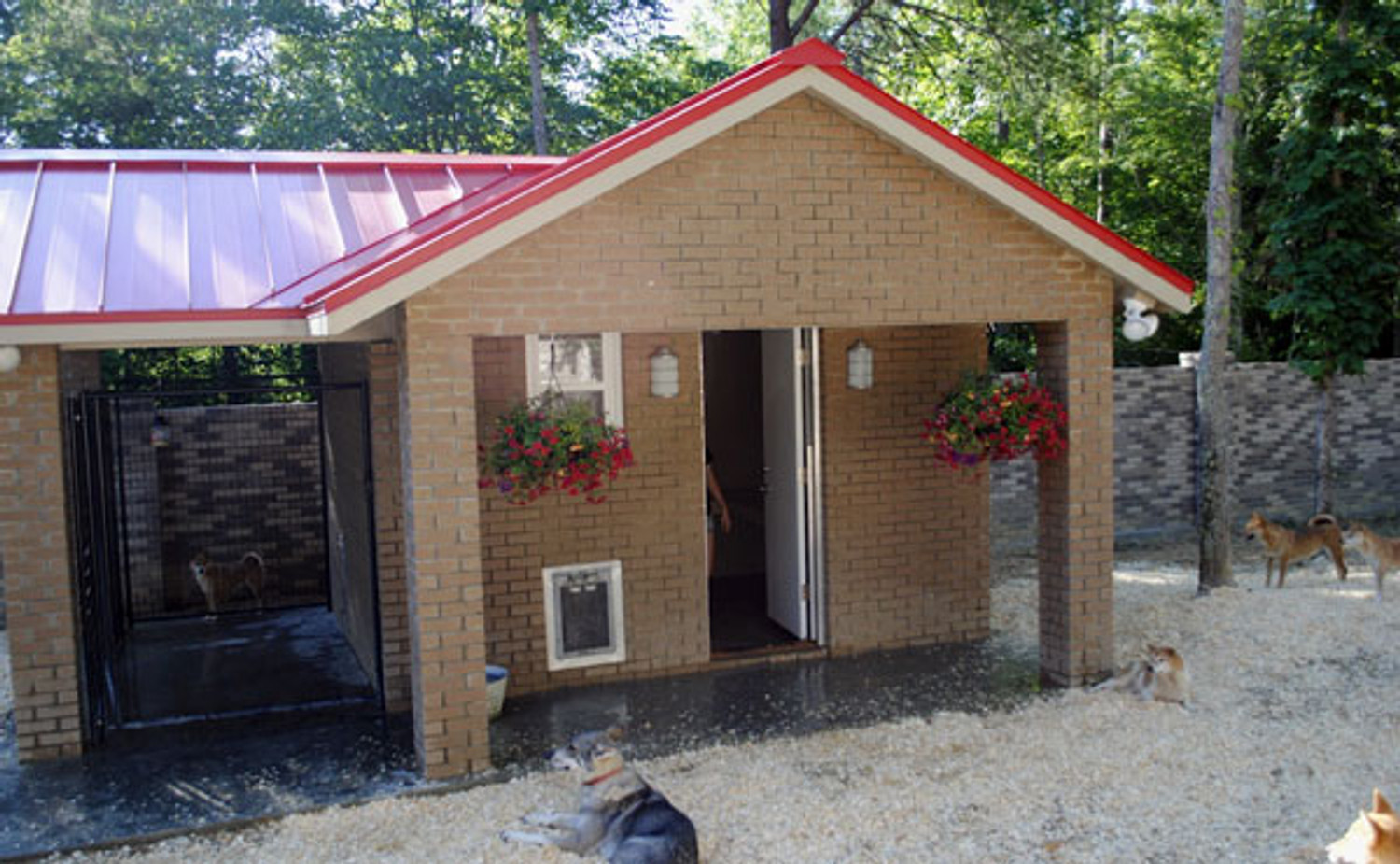 A grand dog house for the Heavy Duty Dog Door to perform