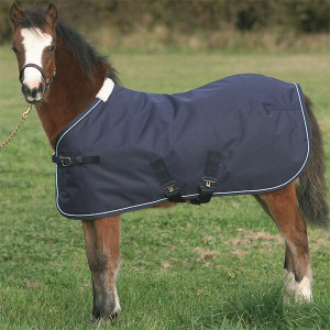 Mark Todd Foal Turnout Rug - Navy