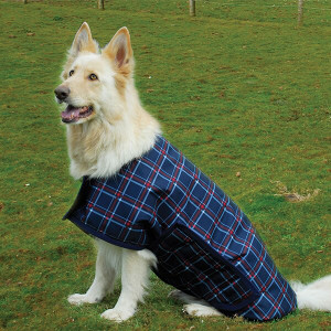 Rhinegold Alaska Waterproof Large Breed Dog Coat - Navy/Red Check