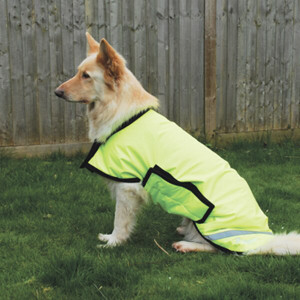 Rhinegold Alaska Waterproof Large Breed Dog Coat - Flourescent