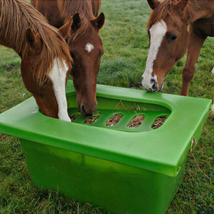 Hay-Graze Horse Feeder by Saddlers