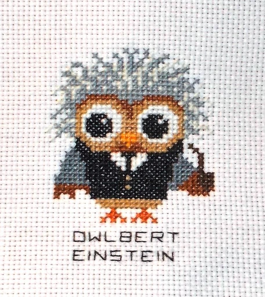 Hootie Owlbert Einstein