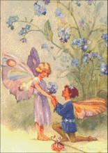 Fairy Proposal