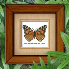 Butterfly Pattern 806