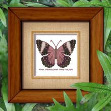 Butterfly Pattern 809