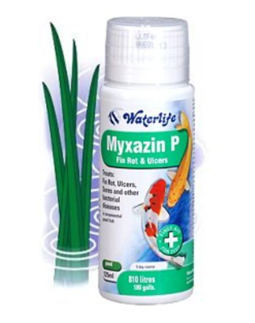 Myxazin P 1 Litre