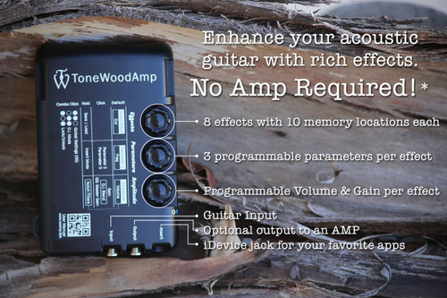 Tone Wood Amp for Acoustic Guitar