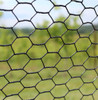 19 Gauge Black Vinyl Coated Hot Dip Galvanized Hex / Poultry Netting Mesh 3/4""