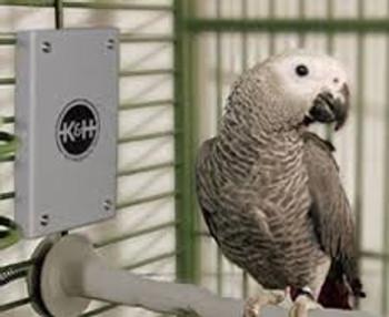 "SNUGGLE UP BIRD WARMER MEDIUM/LARGE GRAY 4"" x 7"" 10 WATTS"