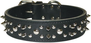 Latigo Leather Spike & Stud Dog Collar