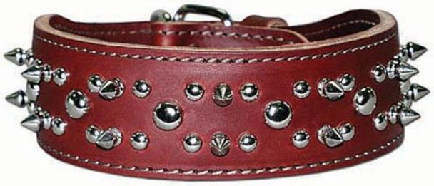 Latigo Leather Spike & Stud Dog Collar