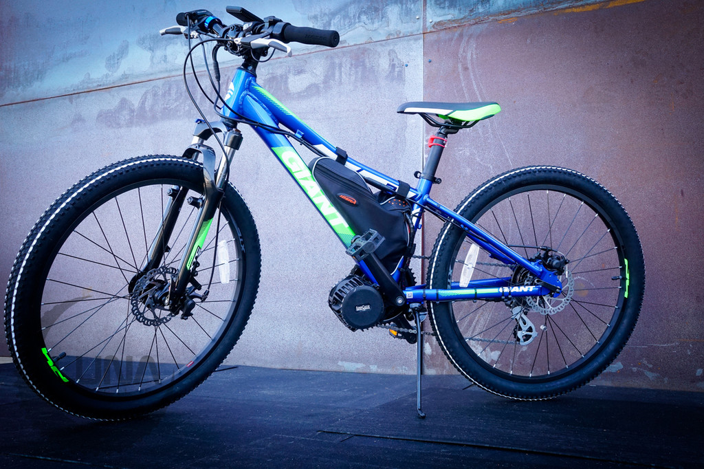 Luna Little Giant BMX EBike with Mid Drive