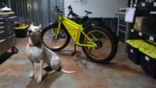 Mud Flap Fenders for Fat Bike  Pair (Sondors)