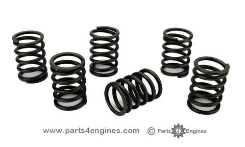 Perkins Perama M30 valve springs - parts4engines.com