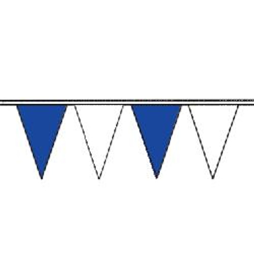 Blue and White string pennant