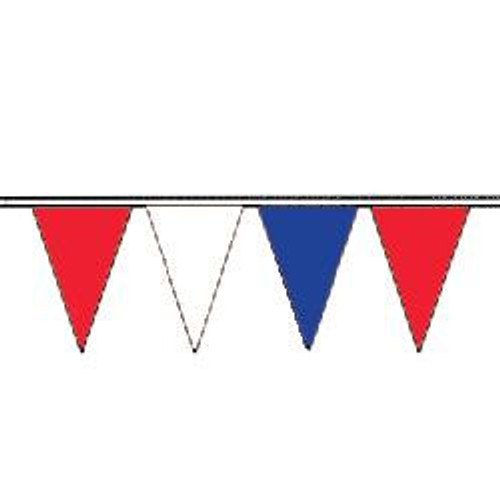 Red White and Blue string pennant