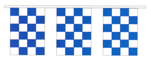 Blue and White Checkered Pennants