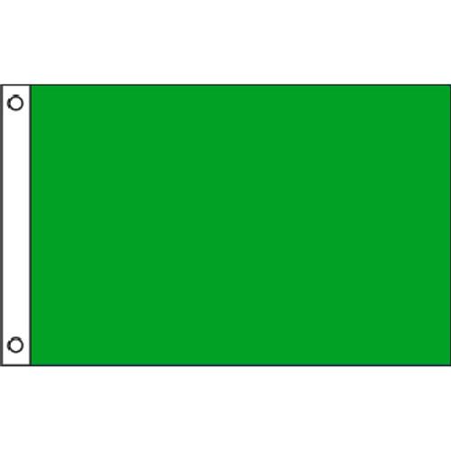Beach Warning - Irish Green