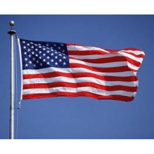American Flag, Polyester 8x12