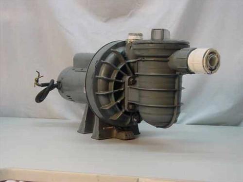 A.O. Smith K48M2P104  1.5 HP Centrifical Water Pump W/Trash Trap