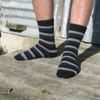 Lothlorian Merino - Possum Accent Stripe Sock
