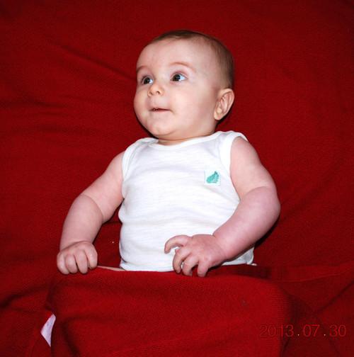 Fernz - Superfine Merino Wool Babies Singlet